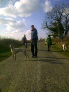 walk_a_dog